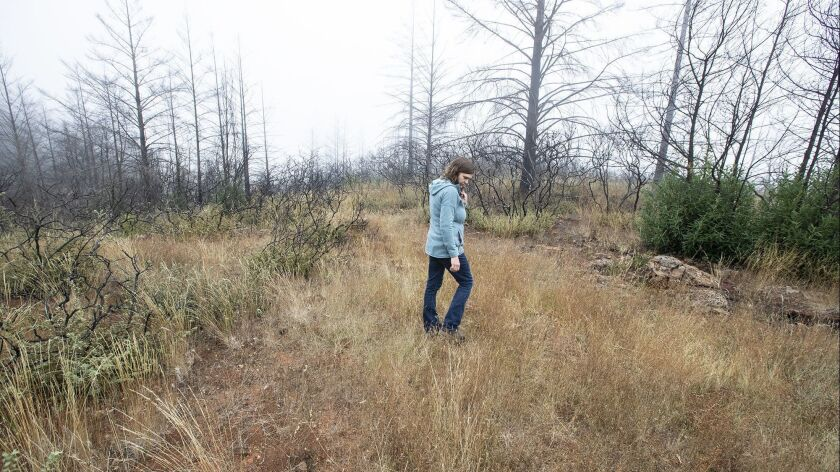 SANTA ROSA, CALIF. -- WEDNESDAY, OCTOBER 10, 2018: Pepperwood Preserve ecologist Michelle Halbur wa