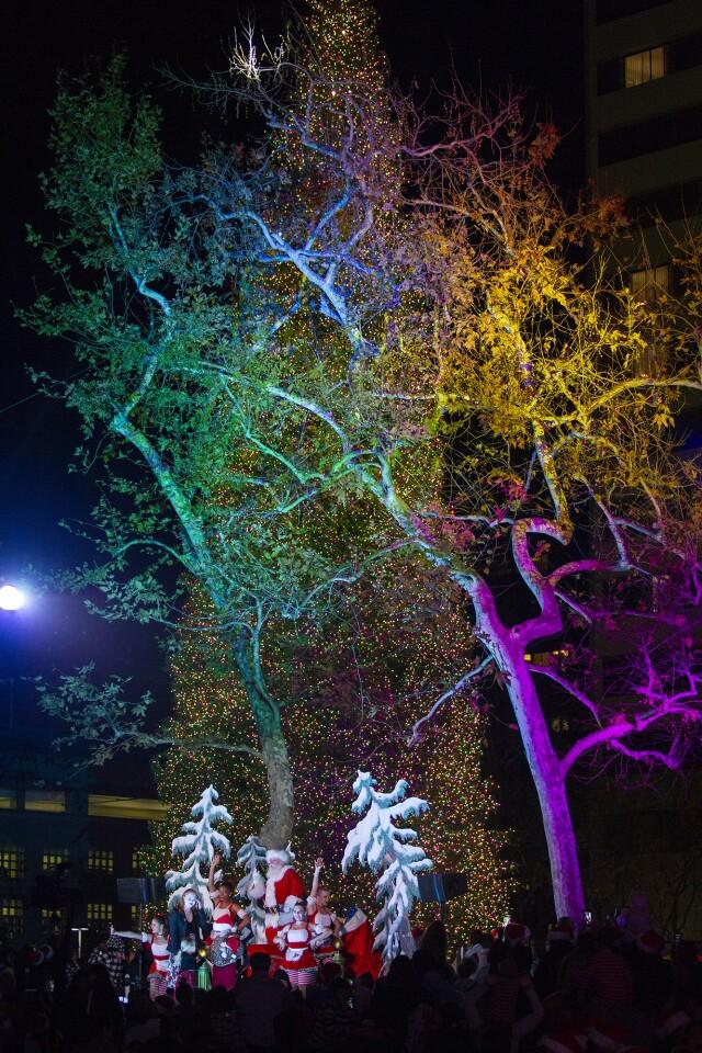 Photo Gallery: The annual South Coast Plaza tree lighting ceremony
