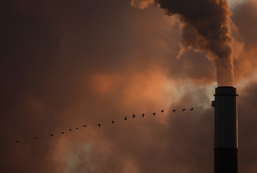 A line of geese fly past a smokestack in Kansas.