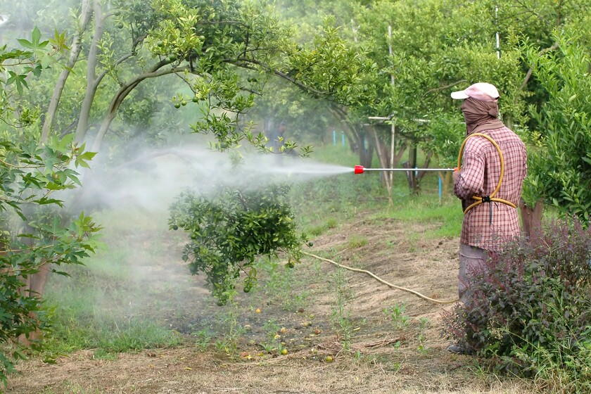 farmer spray pesticide