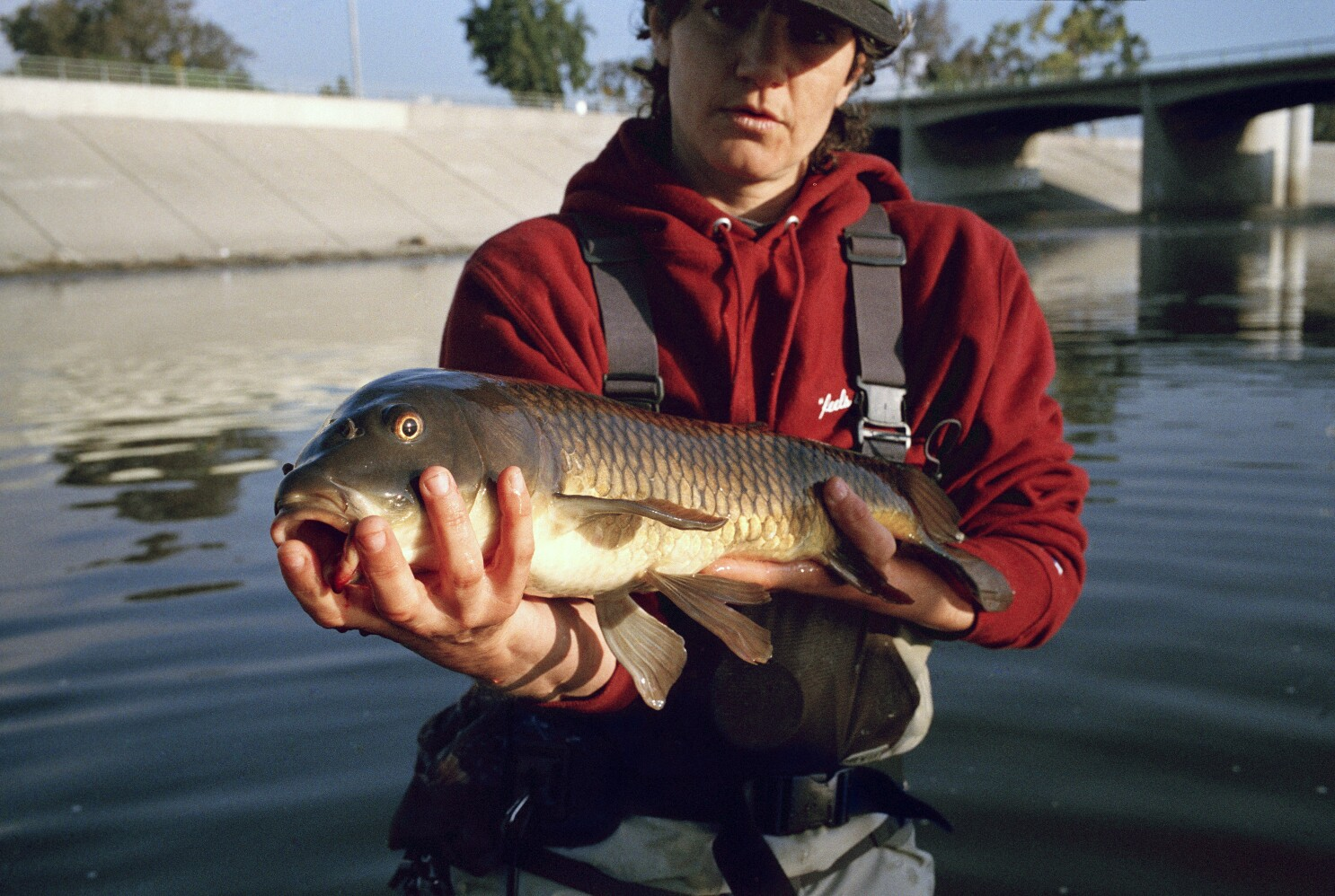 Fly Fishing For Sewer Salmon In The L A River Los Angeles Times