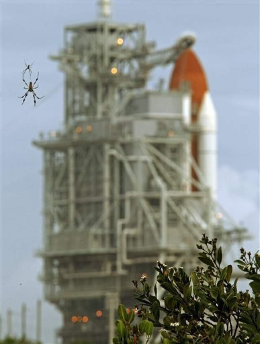 A spider is seen near the space shuttle Atlantis at the Kennedy Space Center Thursday, July 7, 2011, in Cape Canaveral, Fla. Atlantis is scheduled to launch on Friday, July 8 and is the 135th and final space shuttle launch for NASA. (AP Photo/Terry Renna)