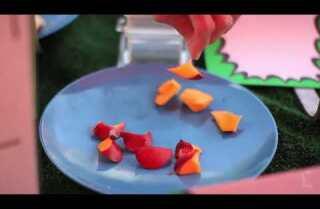Market Fresh: Peaches/Nectarines