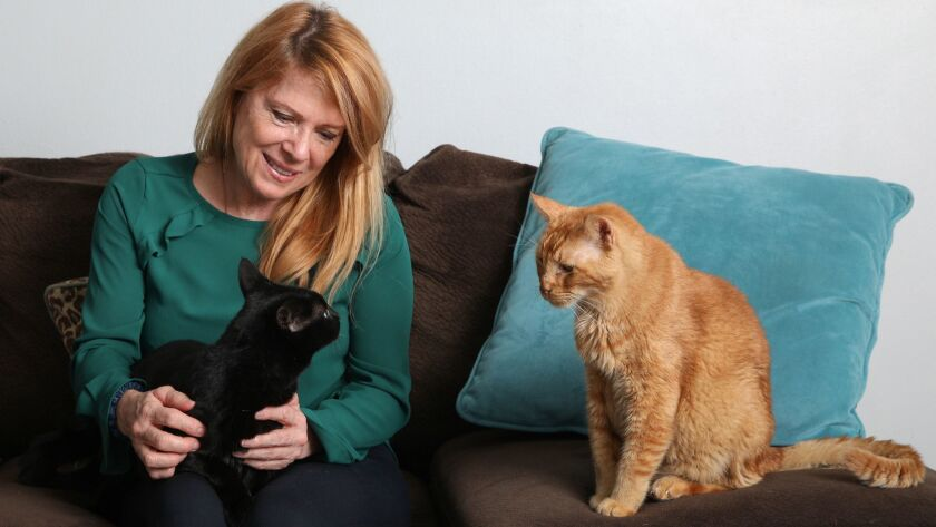 Brenda Fraley, the leader of Save A Purrfect Cat Rescue, sits for a portrait with cats named Cookie