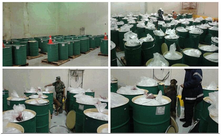 Federales mexicanos inspeccionando barriles con pulpa de mora mezclados con cocaína, en el puerto de Manzanillo, estado de Colima.