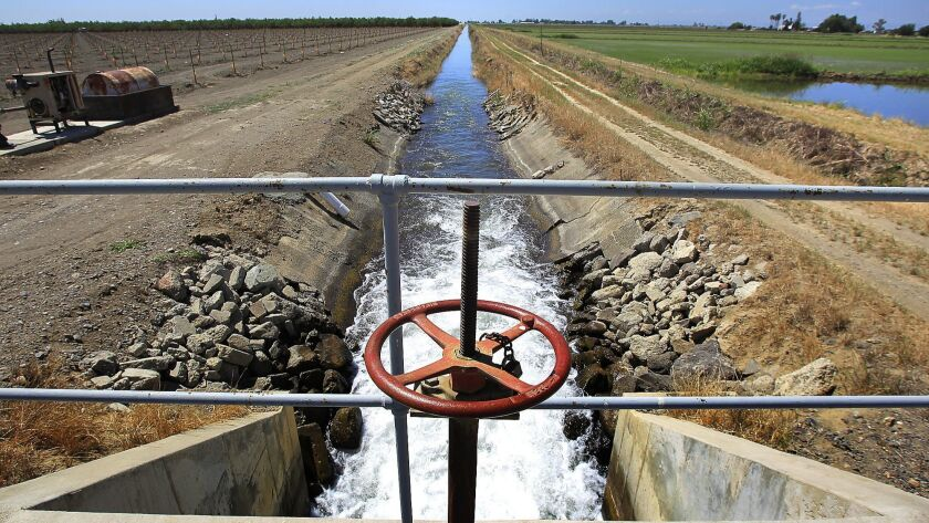 A lateral canal flows off the Glenn-Colusa Canal near fields of rice and nut orchards near the city of Williams in the Sacramento Valley. President Trump criticized the state Tuesday for mismanaging its water resources.