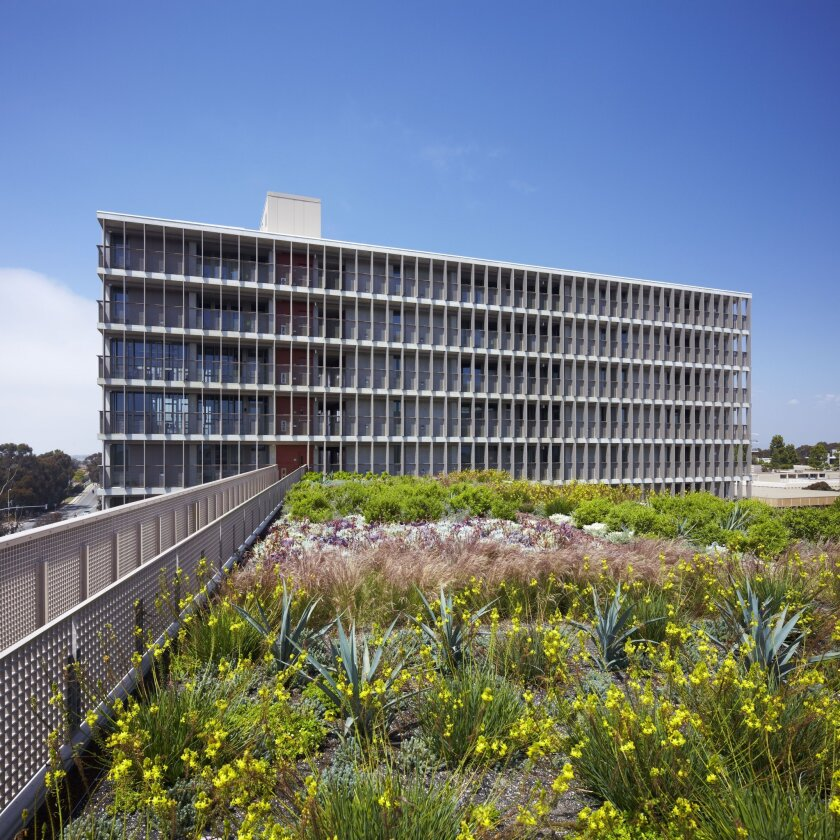 The Charles David Keeling Apartments at Revelle College earned a LEED Platinum designation for its green roof and other features.