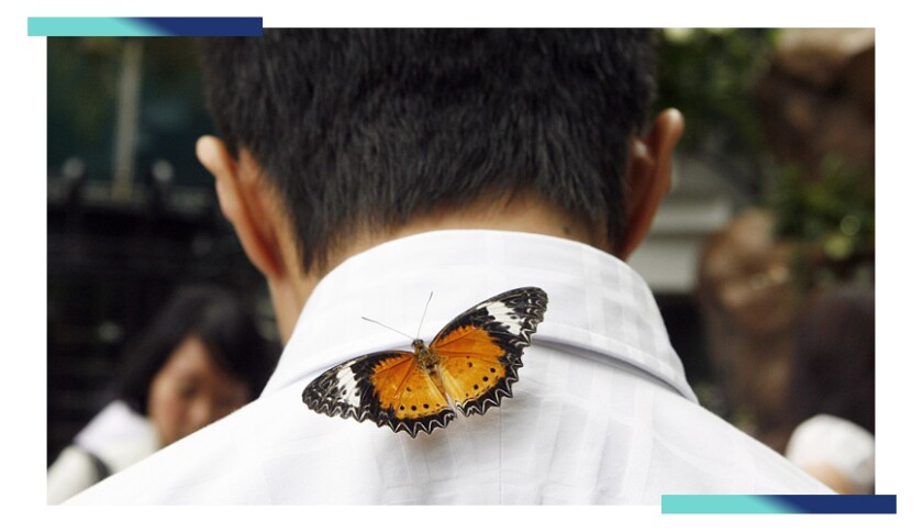 A butterfly rests on the back of a person's neck at Singapore's Changi Airport Butterfly Garden.