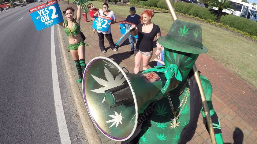 """Chris Hughes, a.k.a """"Cannabis Man,"""" campaigns in Fort Walton Beach, Fla."""