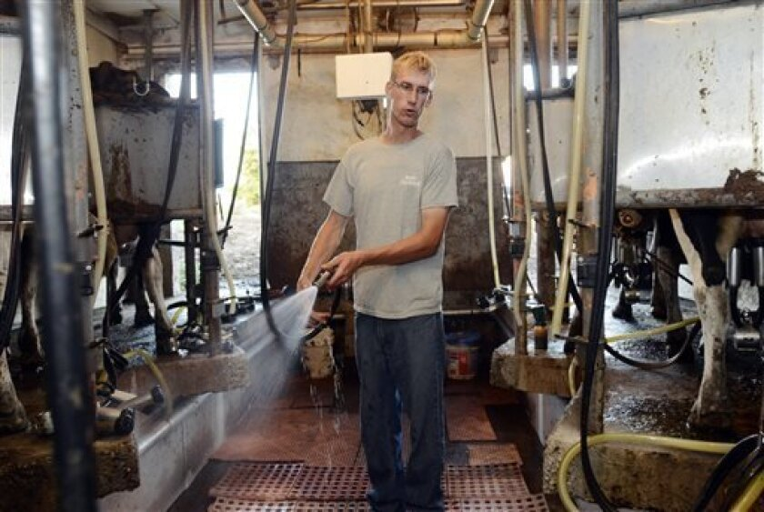 In this Aug. 29, 2013, photo, Dan Dimon, 28, works in the milking parlor at The Carley Farms in Pompey, N.Y. Dimon is in the process of buying the dairy and agricultural farm from his father-in-law, Kevin Carley, in phases. (AP Photos/Heather Ainsworth)