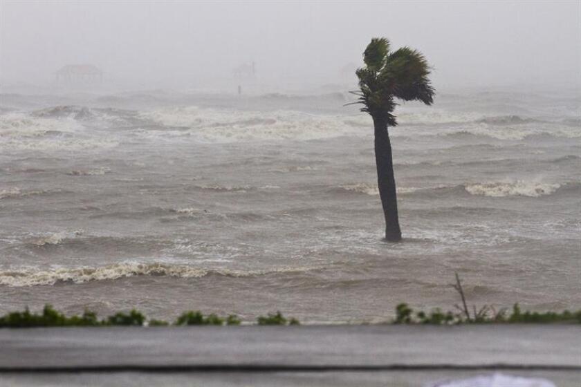 El centro de la tormenta tropical Kirk, que presenta vientos máximos sostenidos de 50 millas por hora (85 km/h), alcanzará hoy zonas de las Antillas Menores donde pueden producirse inundaciones y deslizamientos de tierra. EFE/Archivo