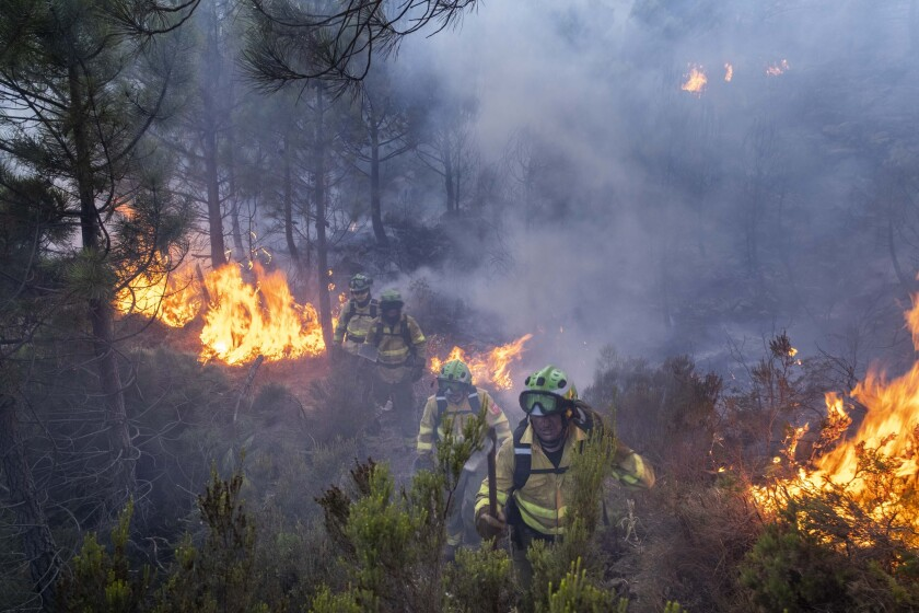 Forest firefighters work on a wildfire near the town of Jubrique, in Malaga province, Spain, Saturday, Sept. 11, 2021. Firefighting crews in southern Spain are waiting for much-needed rainfall expected on Monday that they hope can help extinguish a stubborn mega-fire that has ravaged 7,400 hectares (18,300 acres) in five days and displaced some 3,000 people from their homes. (AP Photo/Pedro Armestre)