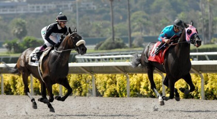 Mike Smith, aboard Joker Face, leads Chantal Sutherland, on Parable, during the 'Battle of the Exes' match race on Aug. 7 at Del Mar. Photo: Kelley Carlson