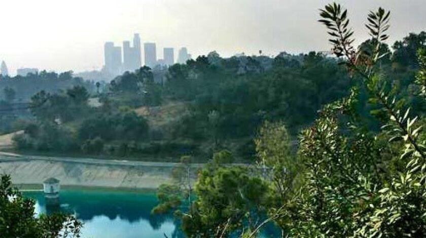 BUCOLIC SETTING: Elysian Reservoir just east of downtown L.A. is one of six open-air drinking water reservoirs in the city.