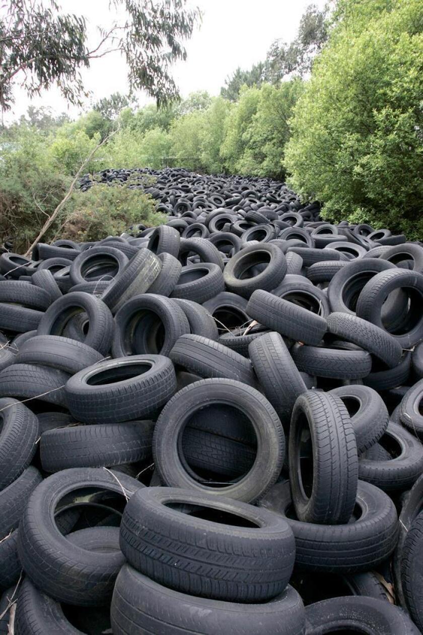 Vista de miles de neumáticos en un tiradero. EFE/Archivo