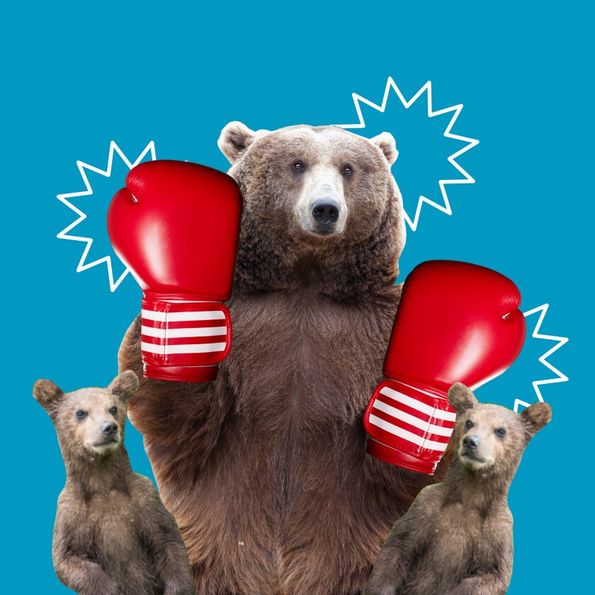 An illustration of a bear with boxing gloves.