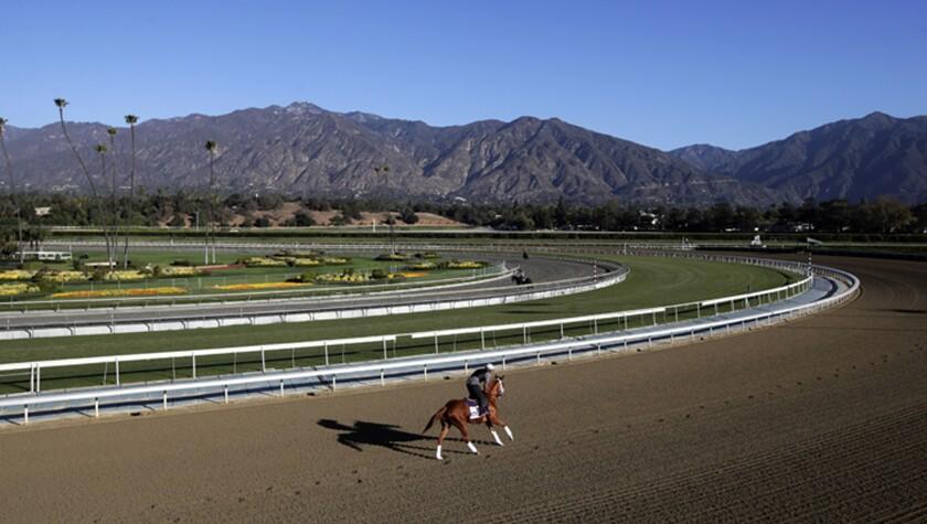 APphoto_Santa Anita Fatalities Horse Racing