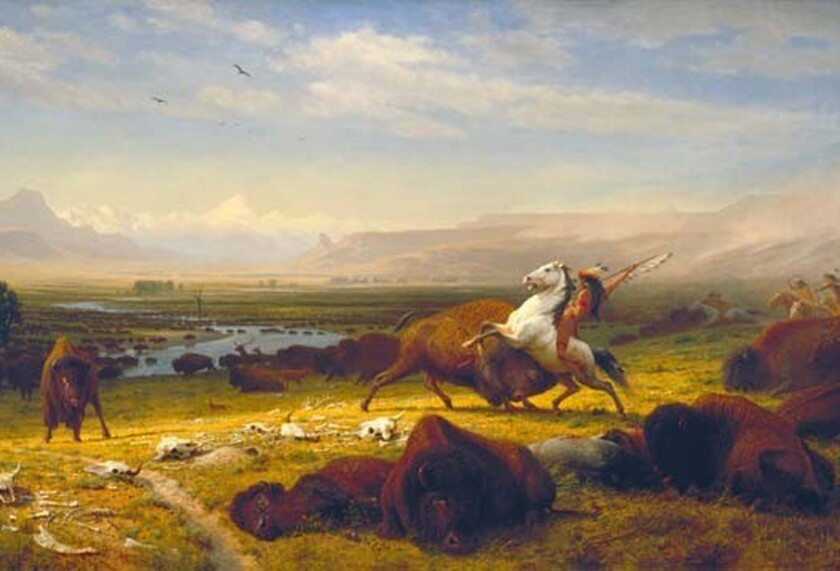 """The Corcoran Gallery has more than 3,000 works of American art dating from the colonial era to World War II, including Hudson River School painter Albert Bierstedt's seminal 1888 canvas, """"The Last of the Buffalo."""""""