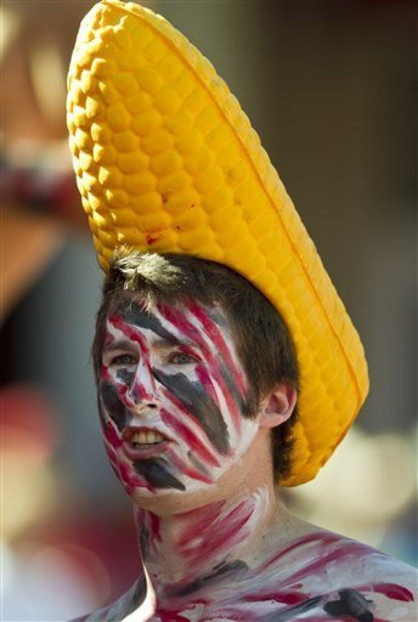 A Nebraska fan waits for the start of the NCAA college football game against Idaho in Lincoln, Neb., Saturday, Sept. 11, 2010. (AP Photo/Nati Harnik)