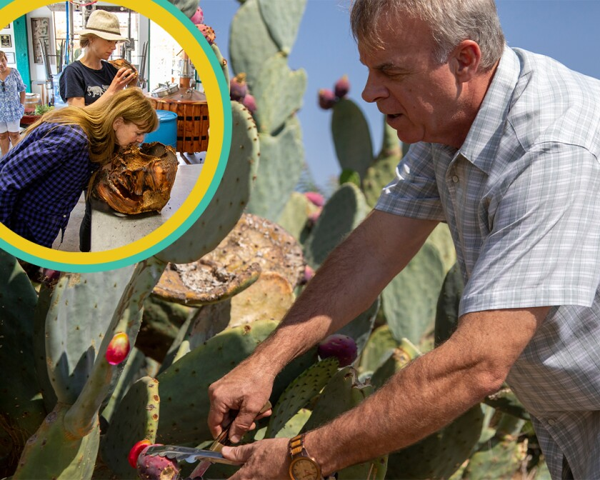 A photo of a man foraging for resources and an inset photo of two people.