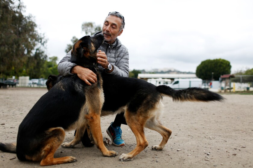 LOS ANGELES, CA-APRIL 29, 2019: Karim Kamal pets dogs he cares for at Barrington Dog Park on April 2