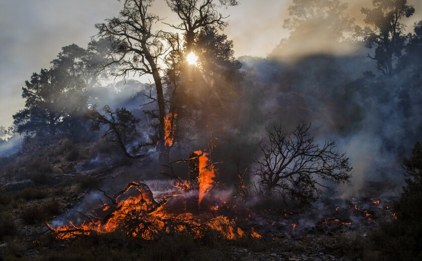 The Bobcat fire continues to burn in the Angeles National Forest near Llano.