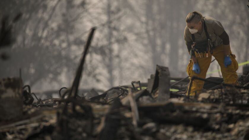 A member of a search-and-rescue team inspects an area for possible human remains while combing through Paradise Gardens, which was destroyed by the Camp fire.