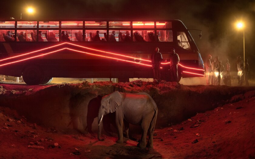 """Bus Station With Elephant and Red Bus"""