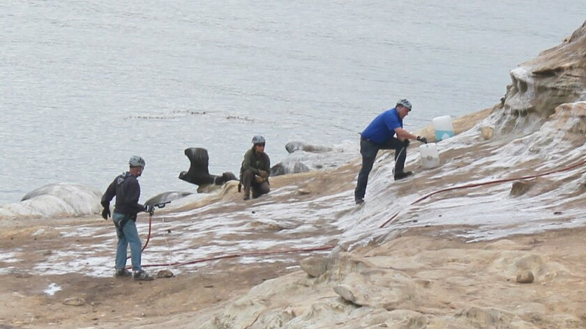Cove-Cleaning-1