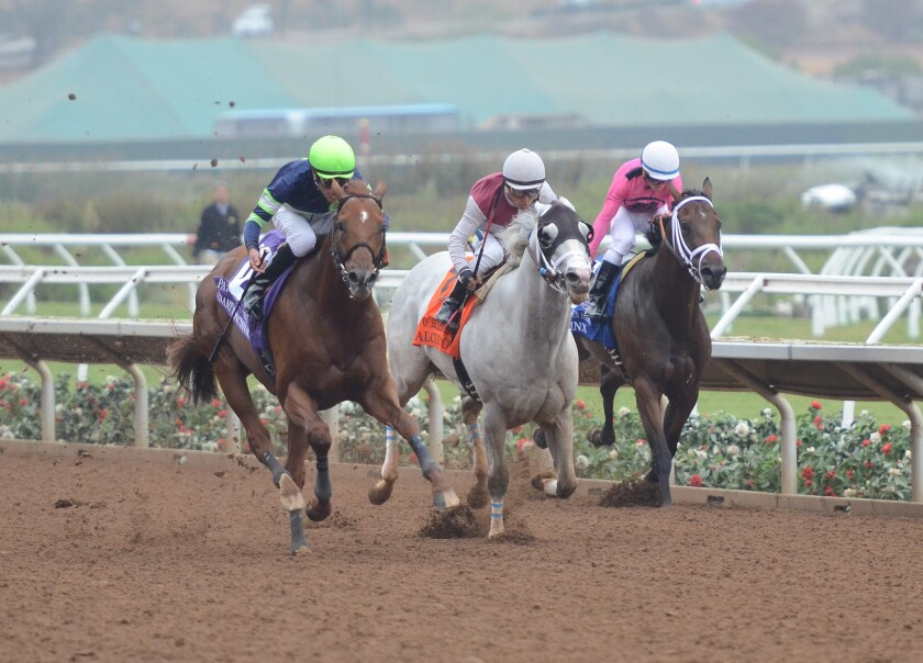 Giant Expectations (left) won the Grade II, $200,000 Pat O'Brien Stakes on Saturday, Aug. 26 at Del Mar.