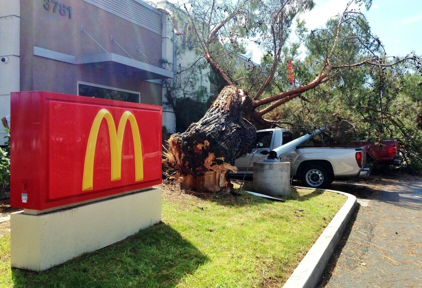 High winds knocked a tree and a utility pole onto two trucks at the Rancho San Diego Village shopping center in La Mesa Tuesday afternoon.