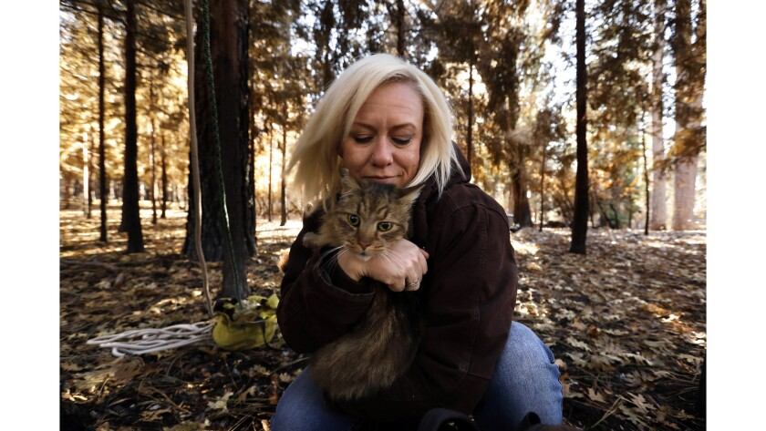 PARADISE, CALIFORNIA--DEC. 6, 2018--Four weeks after the Camp fire, J'Anna Alstad, age 34, was final