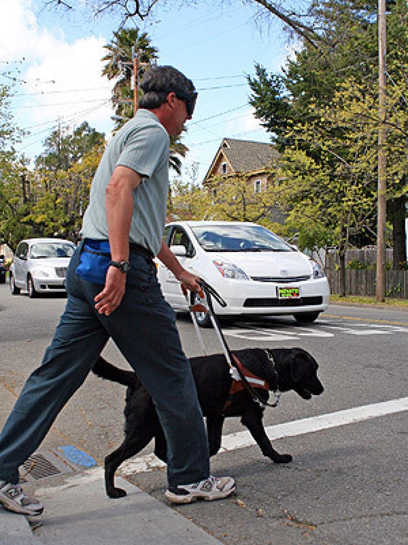 While under blindfold Guide Dog instructor Jeff Grey and Blaze, a Guide Dog in-training, practice traffic routes in San Rafael, CA, with a hybrid vehicle. The hybrid is one of two Prius vehicles that were recently purchased for the training departments at Guide Dogs for the Blind at both campuses.