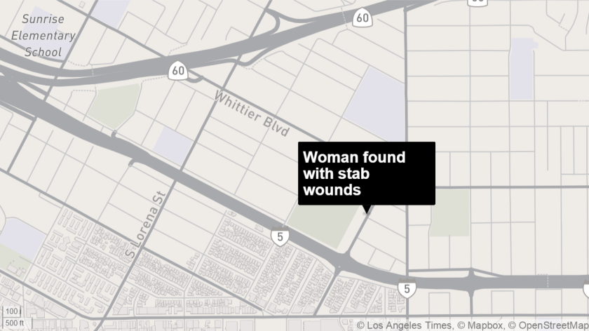 Woman found with stab wounds