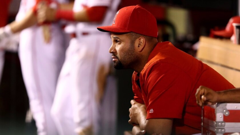 Albert Pujols looks on from the dugout during the Angels' 7-1 win over the Houston Astros on Sept. 30.