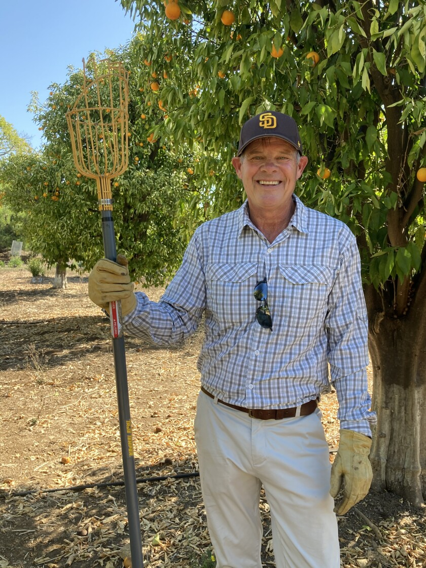 Rancho Santa Fe's Jim Putnam has partnered with Produce Good, donating 2,535 pounds of oranges this year.