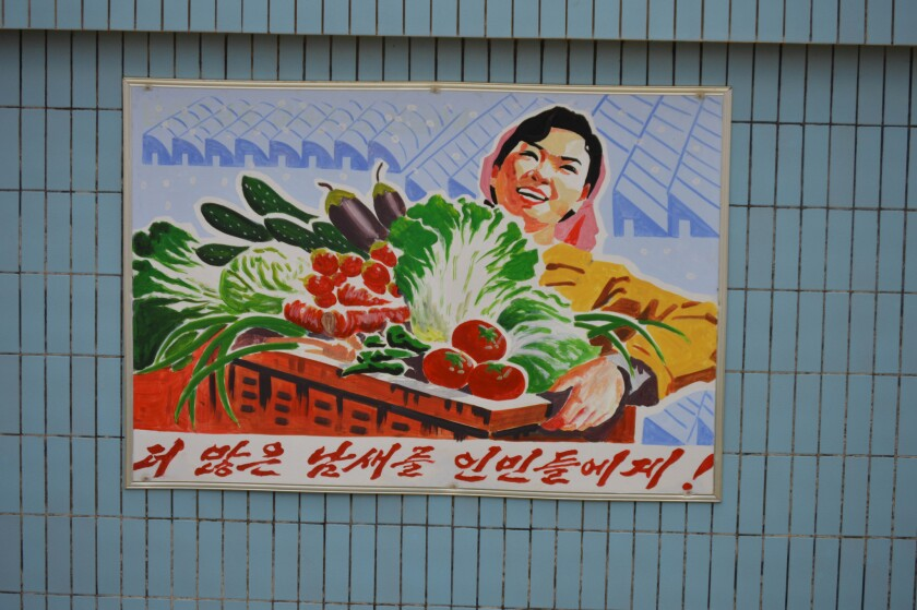 "A propaganda poster at the Jangchon farm says, ""More vegetables for the peo"
