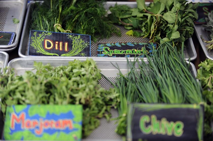 Fresh herbs at the Wednesday Santa Monica farmers market.