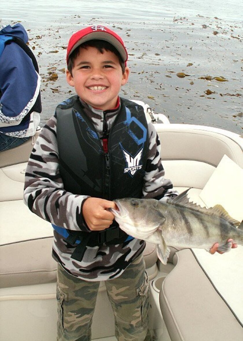 Anthony DeWeese, 8, died Dec. 20 in a boat crash during the annual San Diego Parade  of Lights on San Diego Bay.
