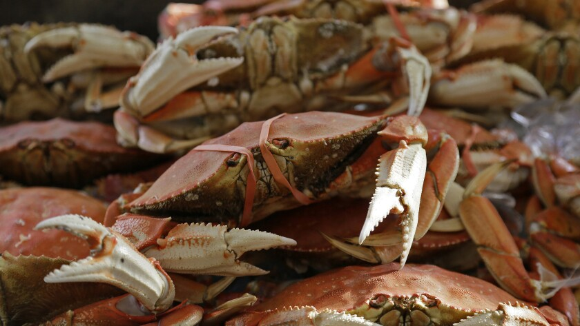 Imported Dungeness crabs are displayed for sale at Fisherman's Wharf, Thursday, Nov. 5, in San Francisco.