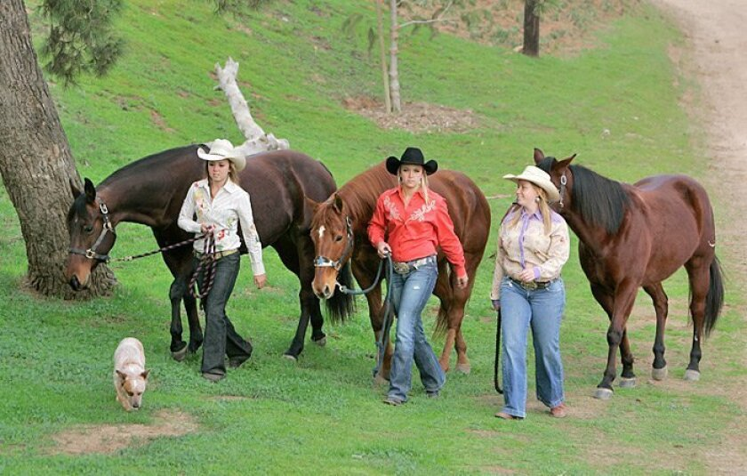 The Devenport sisters — (from left) Macy, Destri and Mindy — walk their horses Foxy, Little and Spencer, while their dog, Watson, tags along in Escondido.