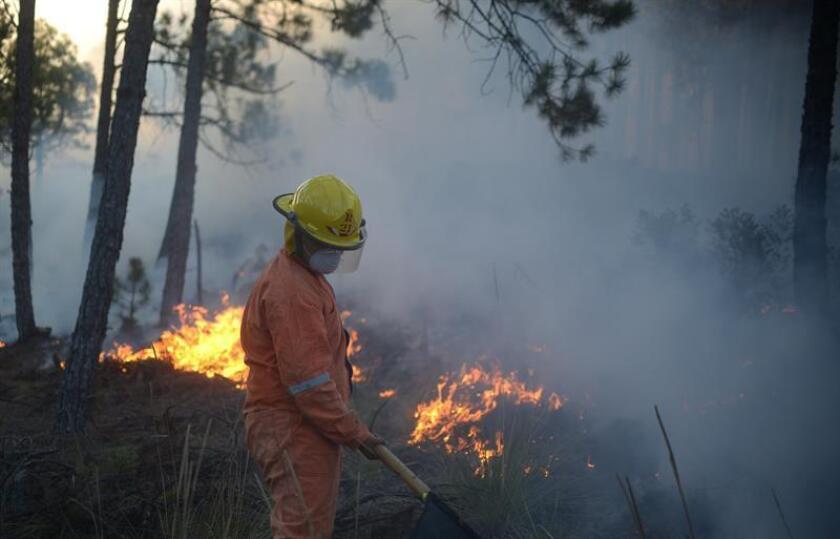 Miembros de Protección Civil intentan sofocar un fuerte incendio forestal que arrasó el lunes 11 de marzo de 2019 con cientos de hectáreas de bosques de pino y amenaza a media docena de poblados en el estado de Veracruz (México). EFE/Archivo