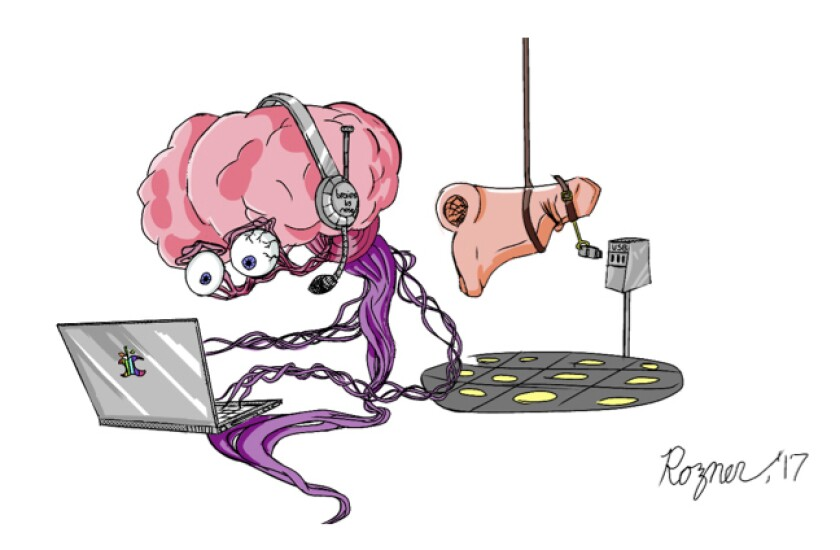 Illustration of a brain wearing headphones and working on a laptop and a nose dangling from a rope over a computer.