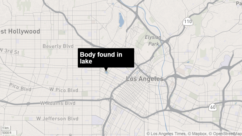 A body was found floating in the lake at MacArthur Park on Thursday.