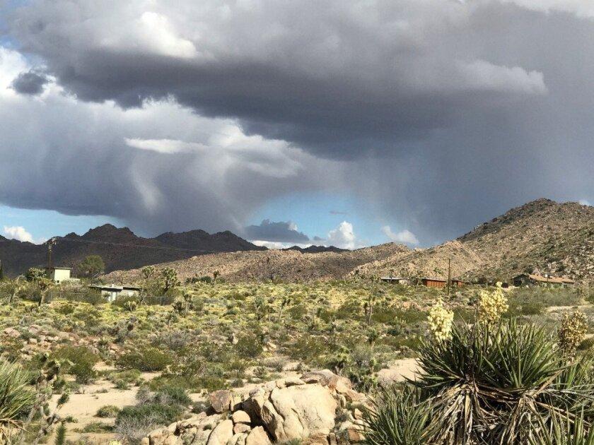 Desert land with dark clouds above