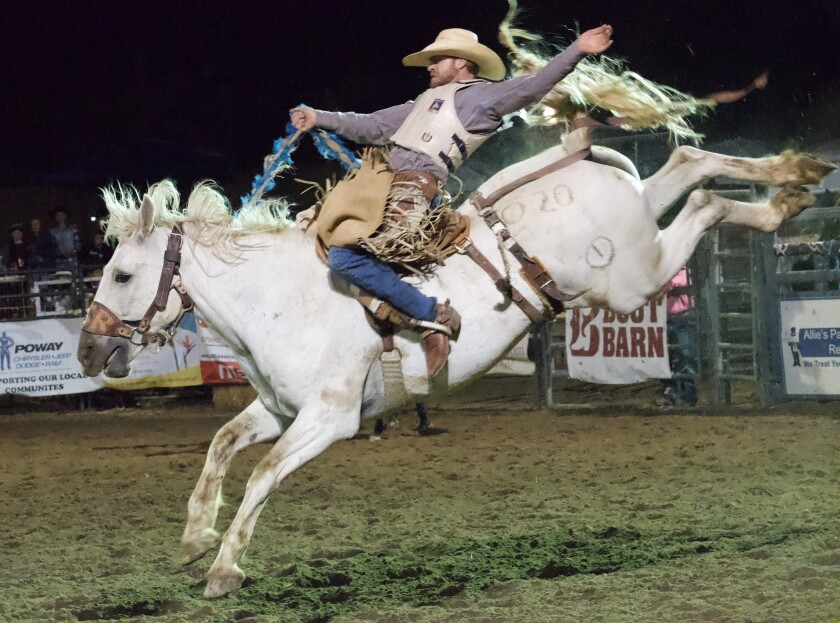 Saddle bronc rider Justin Lawrence from Exeter, California in the 2019 Poway Rodeo.