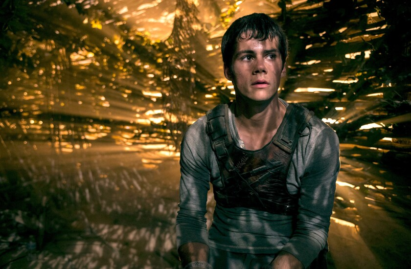 """Dylan O'Brien as Thomas in """"The Maze Runner."""""""