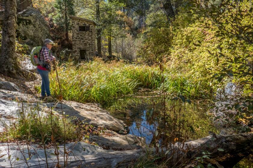 Palomar Trail-3.jpg