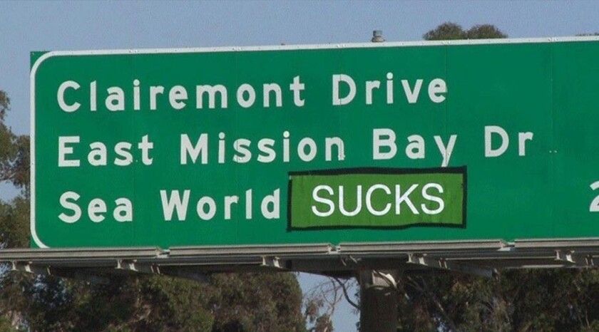 """The word """"drive"""" was covered by entertainer Steve-O of """"Jackass"""" fame."""