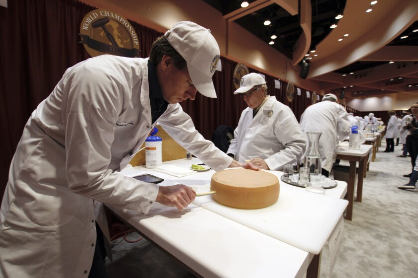Judge Douwe Dijkstra pulls out a piece of Appenzeller cheese at the biennial World Championship Cheese Contest, Tuesday, March 3, 2020, at the Monona Terrace Convention Center in Madison, Wis. It's the largest technical cheese, butter and yogurt competition in the world. This year the competition had a record 3,667 entries from 26 nations. (AP Photo/Carrie Antlfinger)